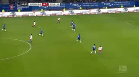 Hamburger Schalke goals and highlights