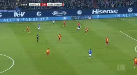 Schalke Hoffenheim goals and highlights