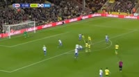 David Stockdale scores own goal in the match Norwich vs Brighton