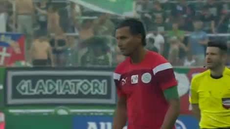 Rapid Wien Mattersburg goals and highlights