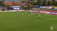 Manfred Fischer scores in the match Hartberg vs Floridsdorfer AC Wien