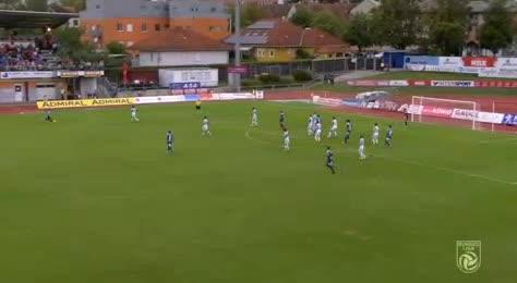 Hartberg TSV FAC Wien goals and highlights